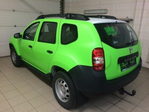 Dacia Dust Apple Green mat
